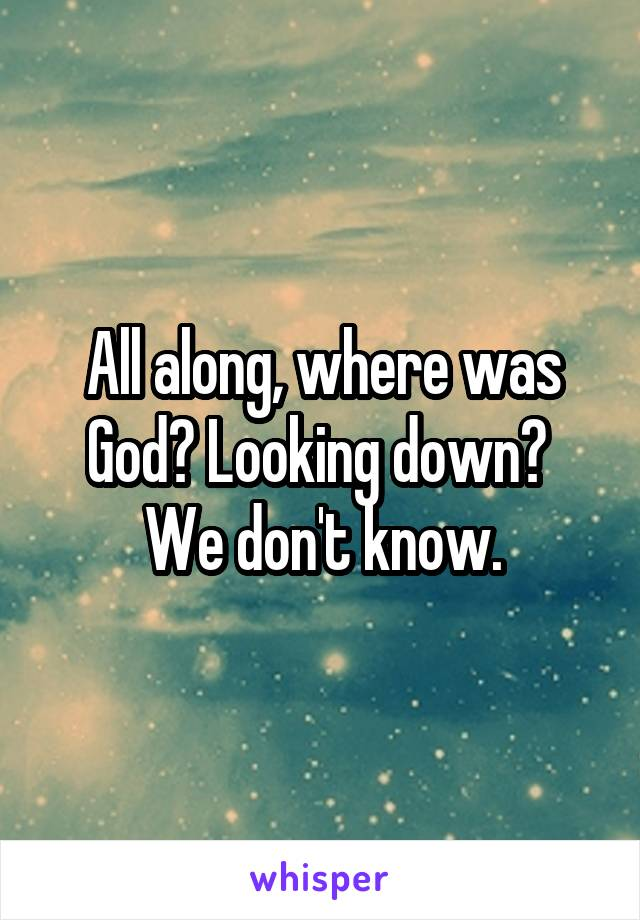 All along, where was God? Looking down?  We don't know.