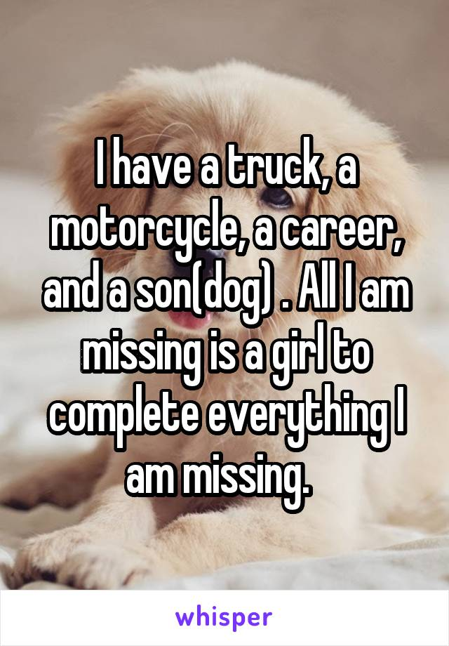 I have a truck, a motorcycle, a career, and a son(dog) . All I am missing is a girl to complete everything I am missing.
