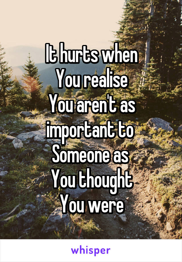 It hurts when You realise You aren't as important to  Someone as  You thought You were