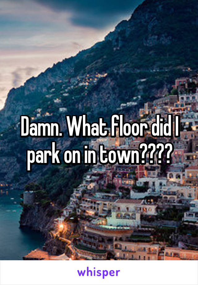 Damn. What floor did I park on in town????