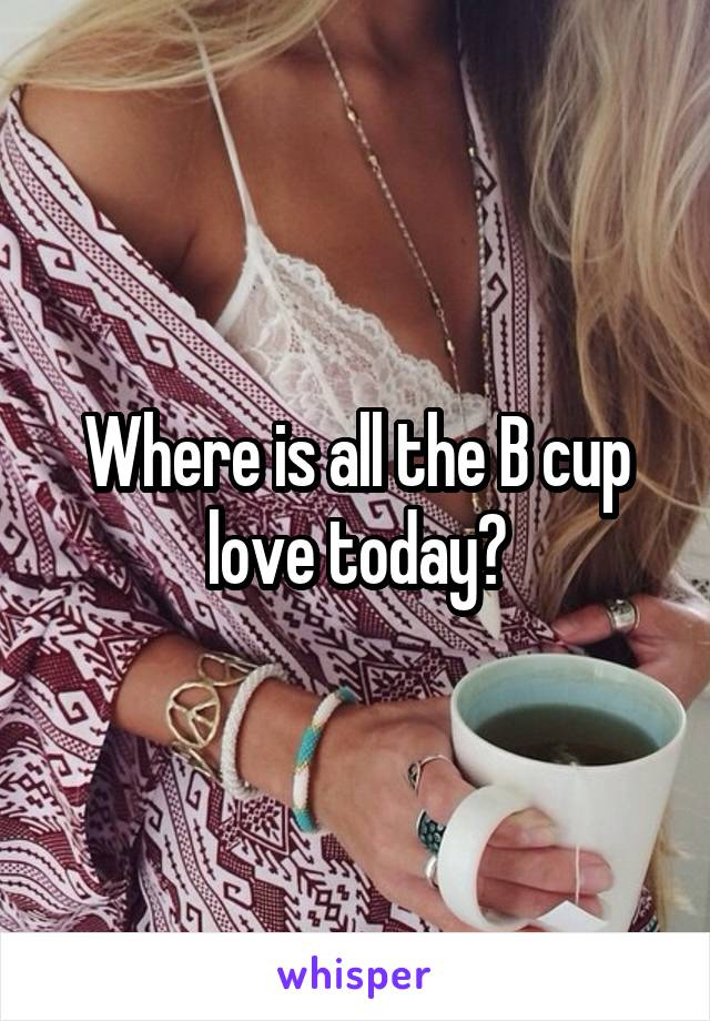 Where is all the B cup love today?