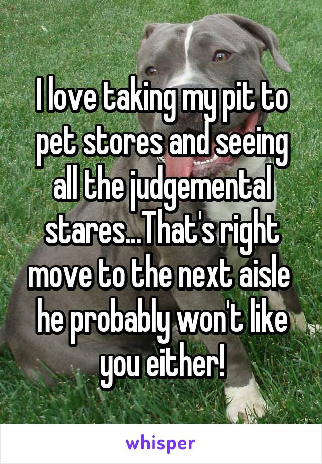 I love taking my pit to pet stores and seeing all the judgemental stares...That's right move to the next aisle  he probably won't like you either!