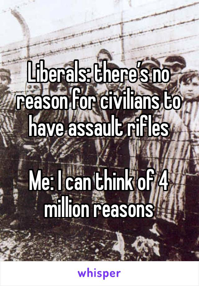 Liberals: there's no reason for civilians to have assault rifles   Me: I can think of 4 million reasons