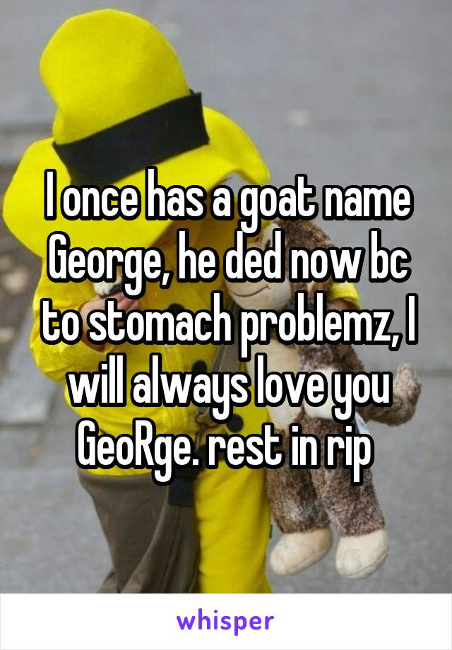I once has a goat name George, he ded now bc to stomach problemz, I will always love you GeoRge. rest in rip