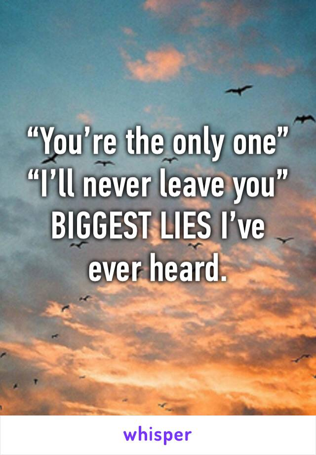 """""""You're the only one""""  """"I'll never leave you""""  BIGGEST LIES I've ever heard."""