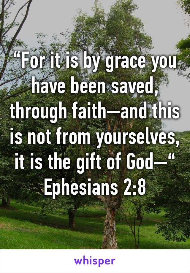 """For it is by grace you have been saved, through faith—and this is not from yourselves, it is the gift of God—"" Ephesians 2:8"