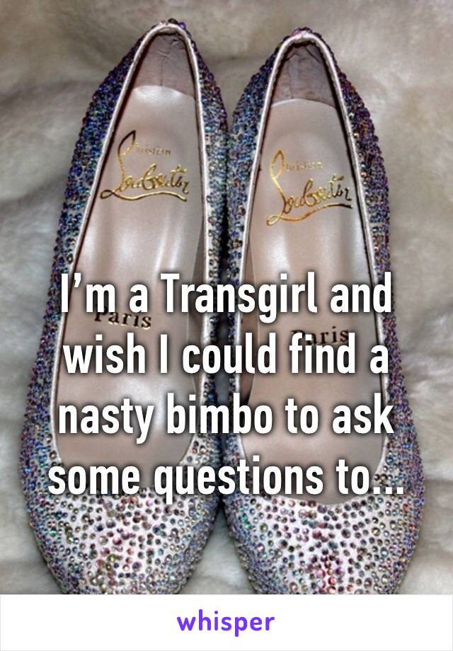 I'm a Transgirl and wish I could find a nasty bimbo to ask some questions to...