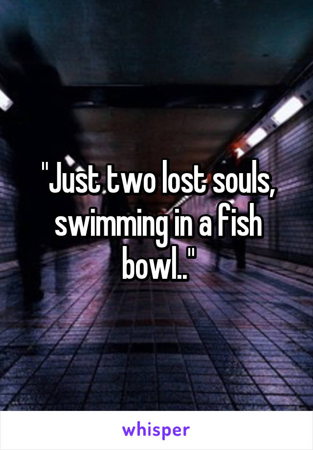 """""""Just two lost souls, swimming in a fish bowl.."""""""