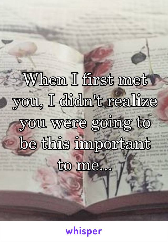 When I first met you, I didn't realize you were going to be this important to me...