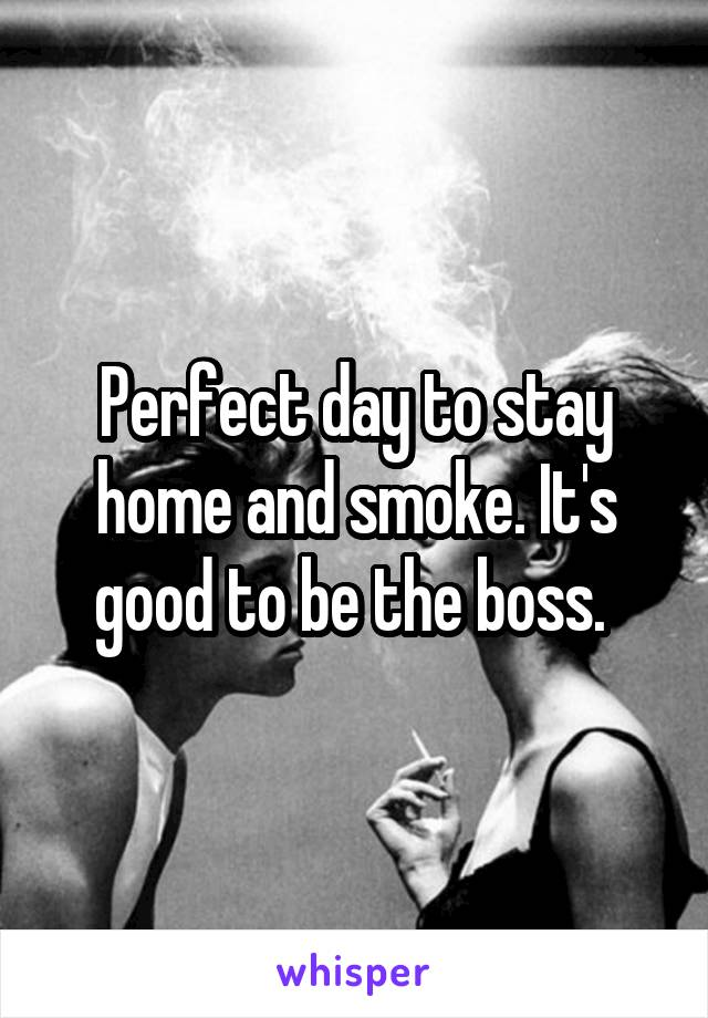 Perfect day to stay home and smoke. It's good to be the boss.