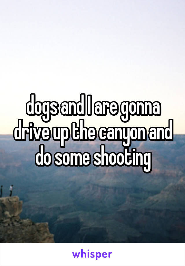 dogs and I are gonna drive up the canyon and do some shooting