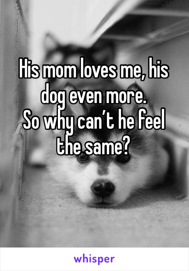 His mom loves me, his dog even more.  So why can't he feel the same?
