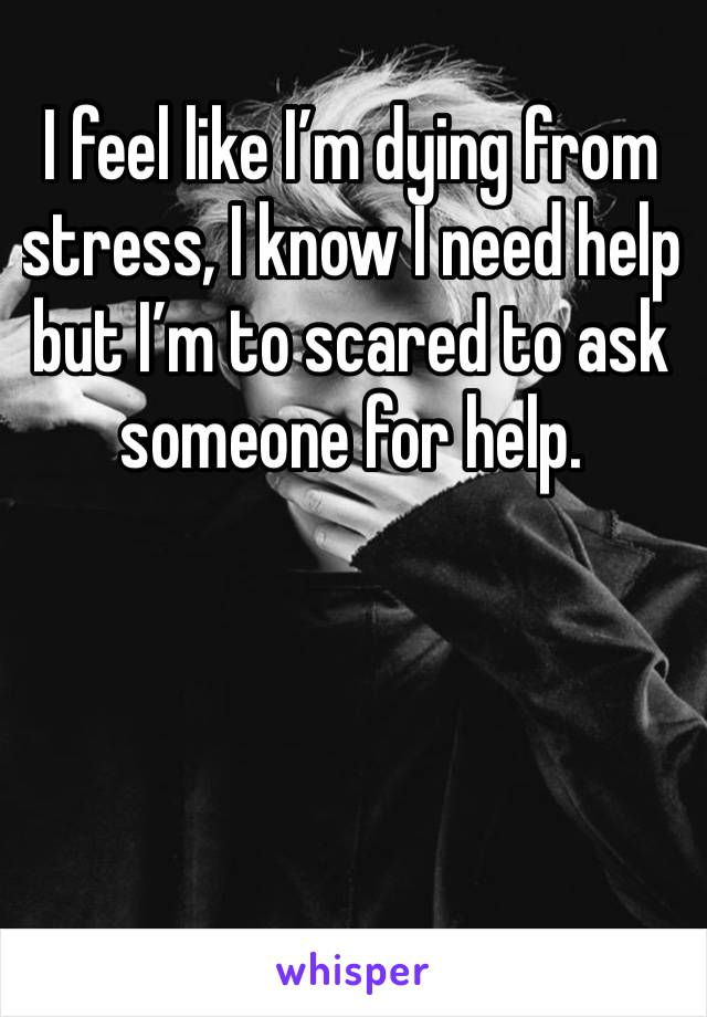I feel like I'm dying from stress, I know I need help but I'm to scared to ask someone for help.