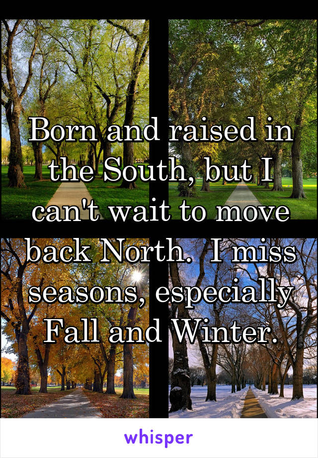 Born and raised in the South, but I can't wait to move back North.  I miss seasons, especially Fall and Winter.