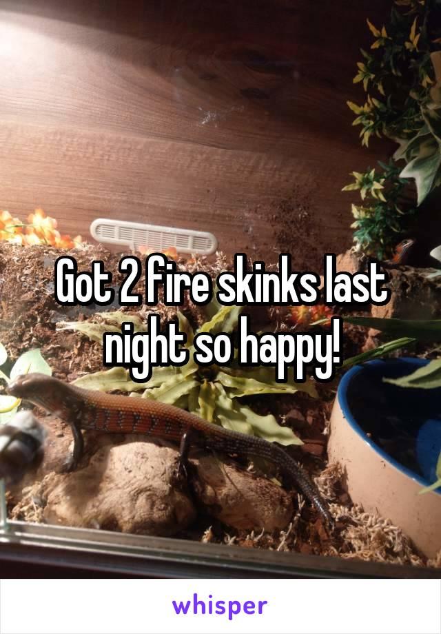 Got 2 fire skinks last night so happy!