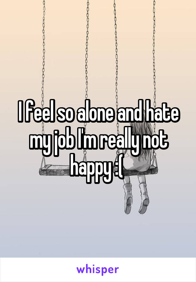 I feel so alone and hate my job I'm really not happy :(