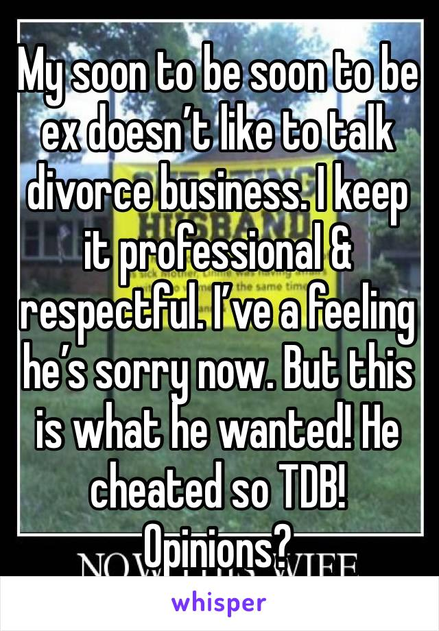 My soon to be soon to be ex doesn't like to talk divorce business. I keep it professional & respectful. I've a feeling he's sorry now. But this is what he wanted! He cheated so TDB! Opinions?