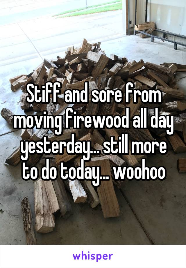 Stiff and sore from moving firewood all day yesterday... still more to do today... woohoo