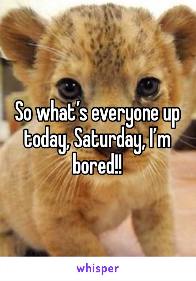 So what's everyone up today, Saturday, I'm bored!!