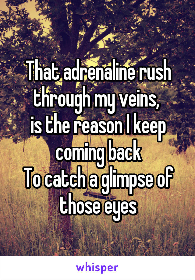 That adrenaline rush through my veins,  is the reason I keep coming back To catch a glimpse of those eyes