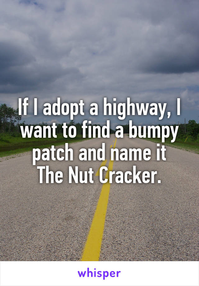 If I adopt a highway, I want to find a bumpy patch and name it The Nut Cracker.