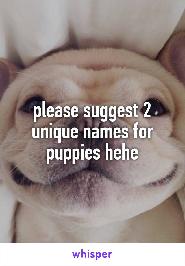 please suggest 2 unique names for puppies hehe