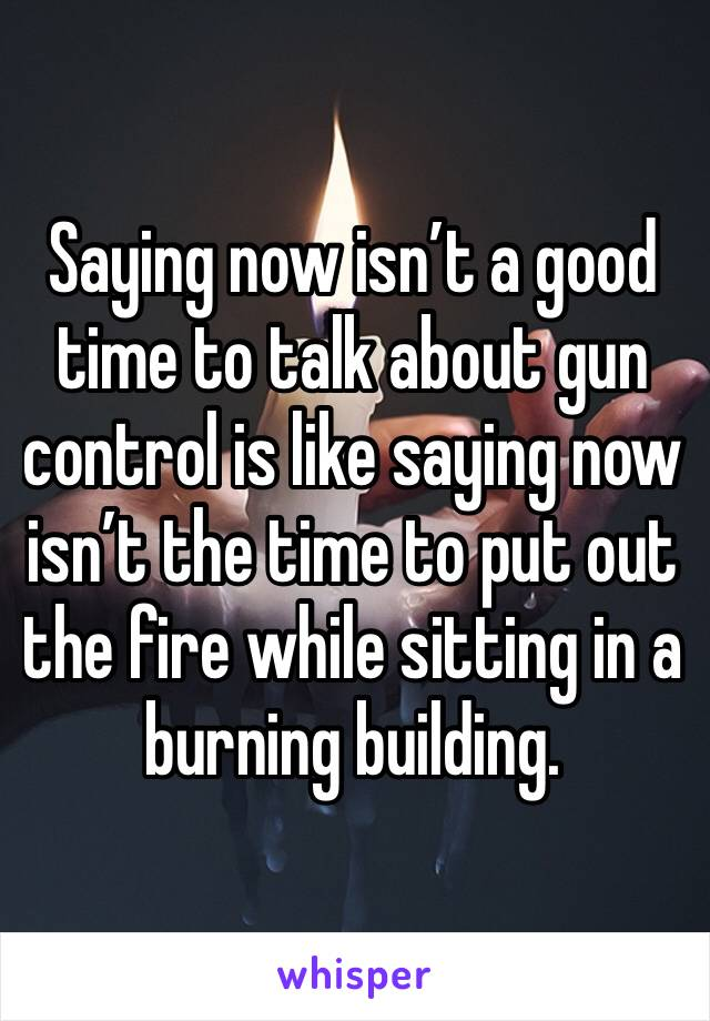 Saying now isn't a good time to talk about gun control is like saying now isn't the time to put out the fire while sitting in a burning building.