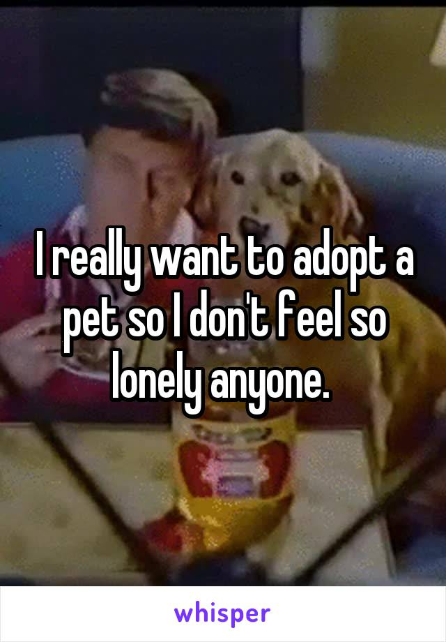 I really want to adopt a pet so I don't feel so lonely anyone.