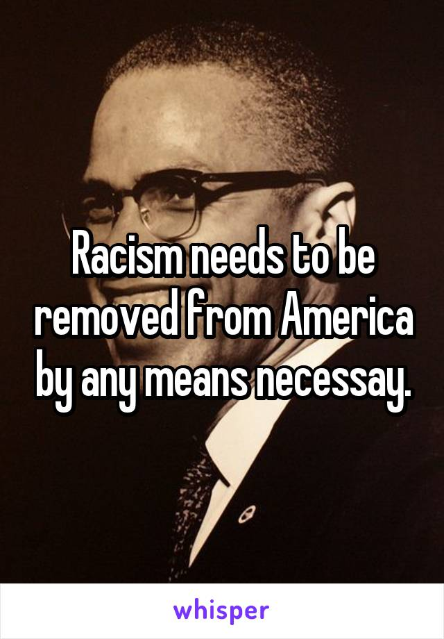 Racism needs to be removed from America by any means necessay.
