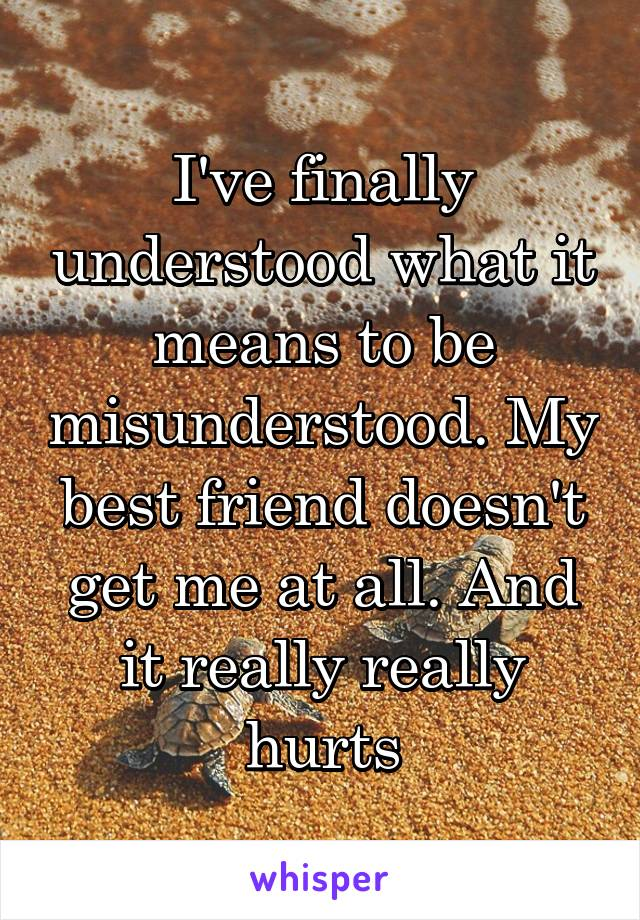 I've finally understood what it means to be misunderstood. My best friend doesn't get me at all. And it really really hurts