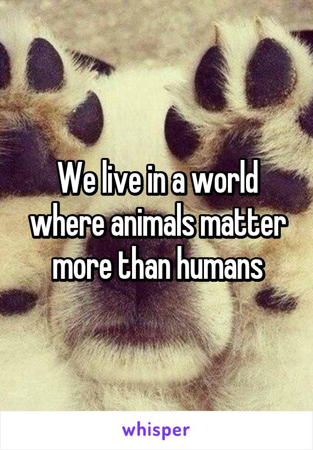 We live in a world where animals matter more than humans