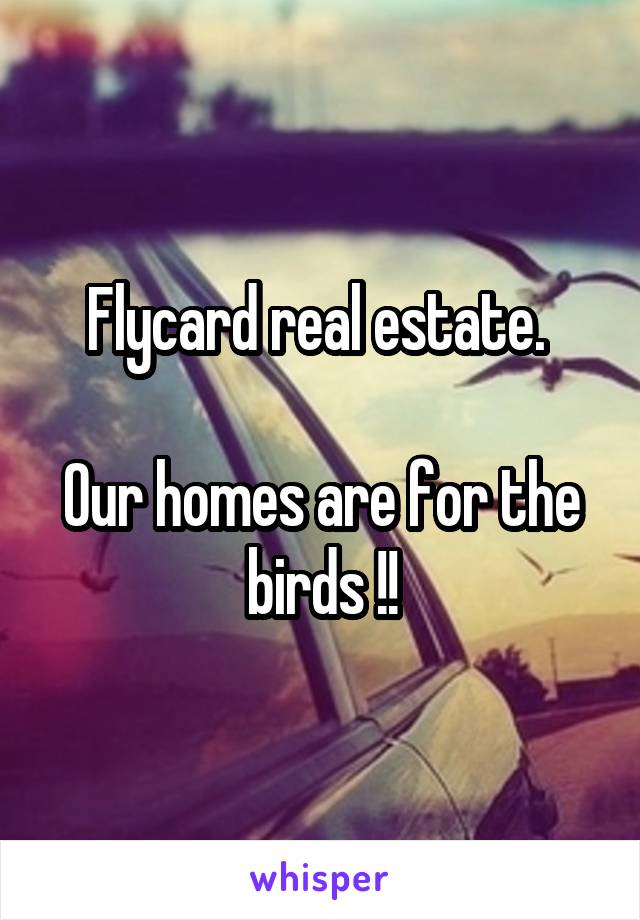 Flycard real estate.   Our homes are for the birds !!
