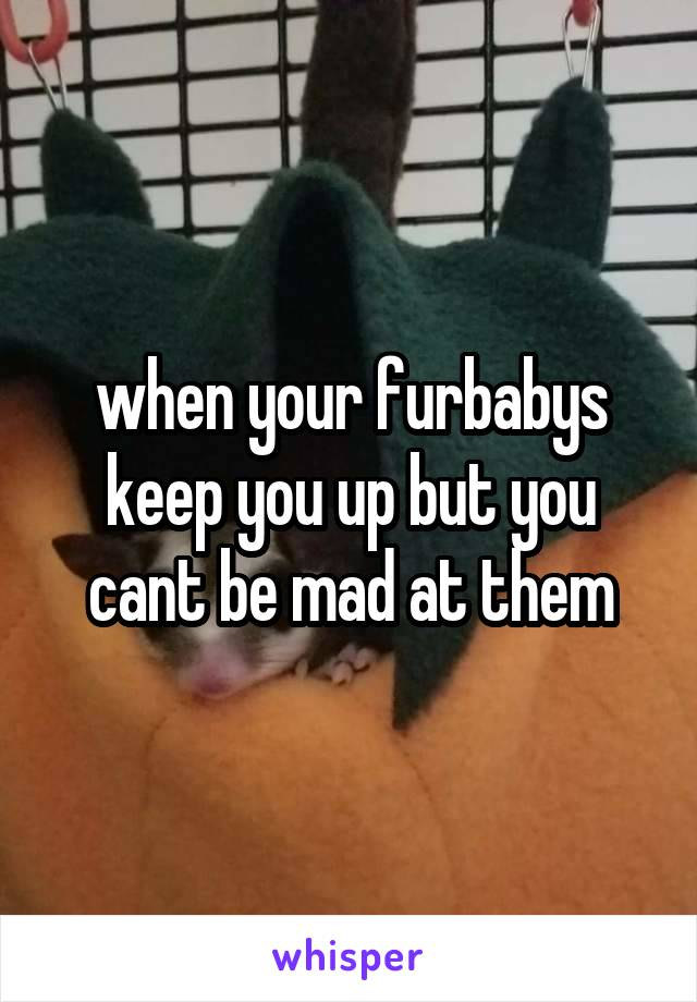 when your furbabys keep you up but you cant be mad at them