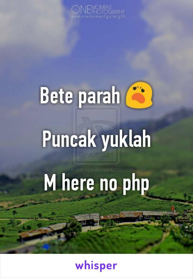 Bete parah 😦  Puncak yuklah  M here no php