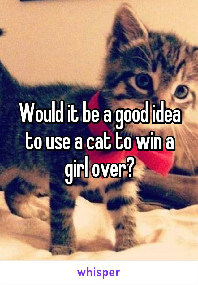 Would it be a good idea to use a cat to win a girl over?