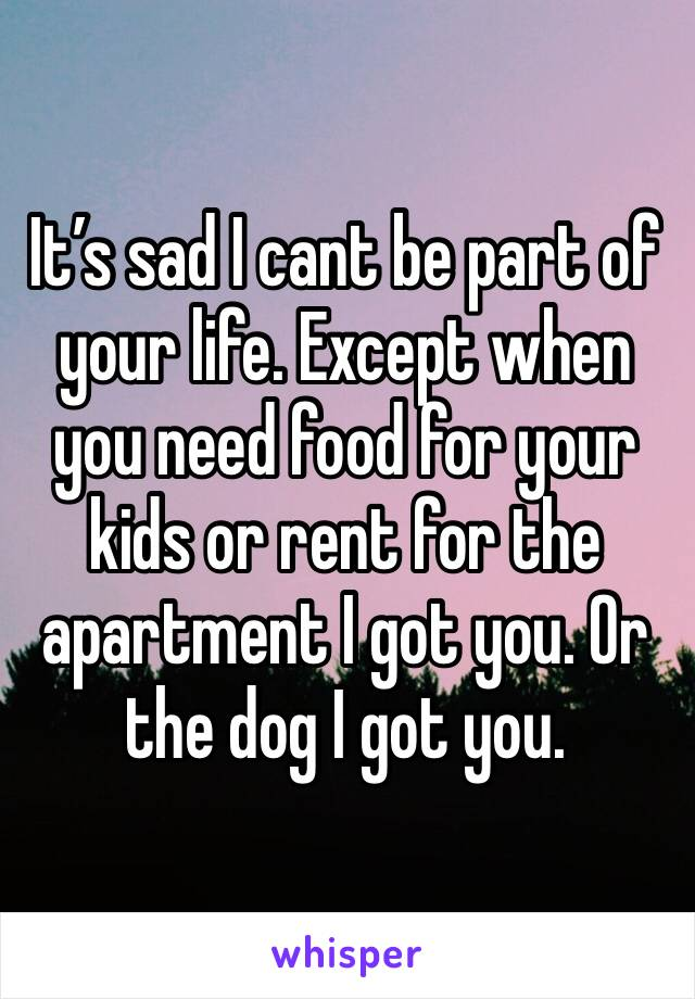 It's sad I cant be part of your life. Except when you need food for your kids or rent for the apartment I got you. Or the dog I got you.
