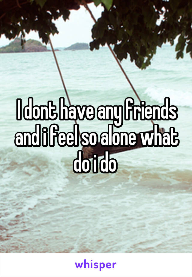 I dont have any friends and i feel so alone what do i do