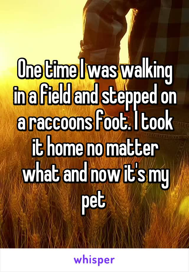 One time I was walking in a field and stepped on a raccoons foot. I took it home no matter what and now it's my pet
