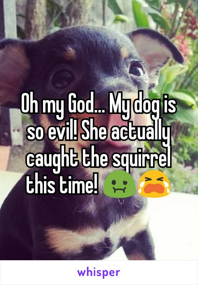 Oh my God... My dog is so evil! She actually caught the squirrel this time! 🤢😭