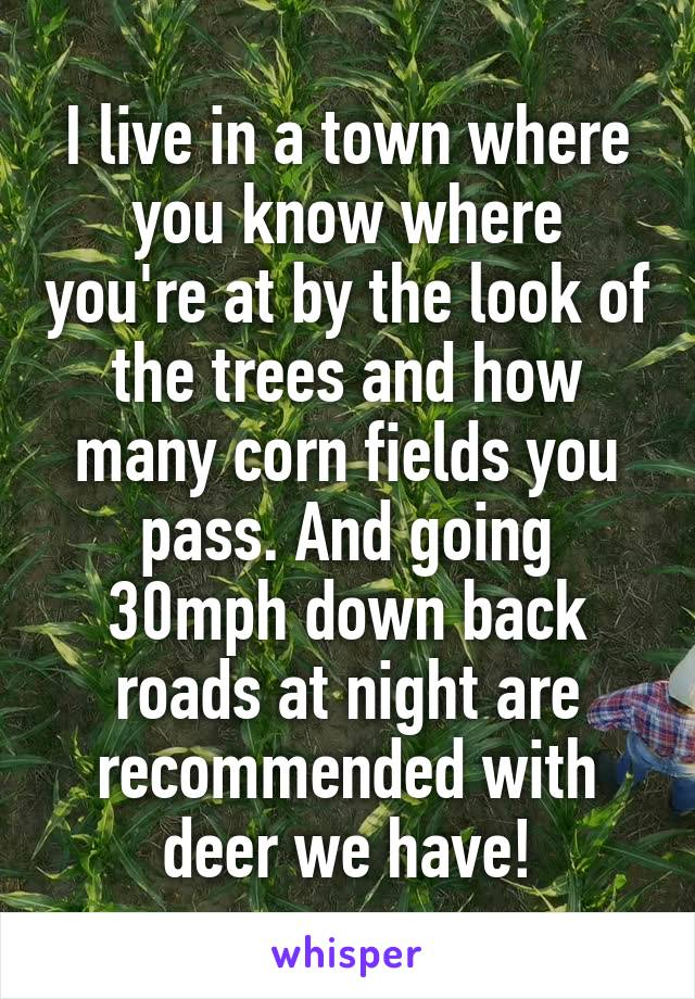 I live in a town where you know where you're at by the look of the trees and how many corn fields you pass. And going 30mph down back roads at night are recommended with deer we have!