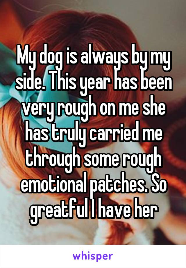 My dog is always by my side. This year has been very rough on me she has truly carried me through some rough emotional patches. So greatful I have her