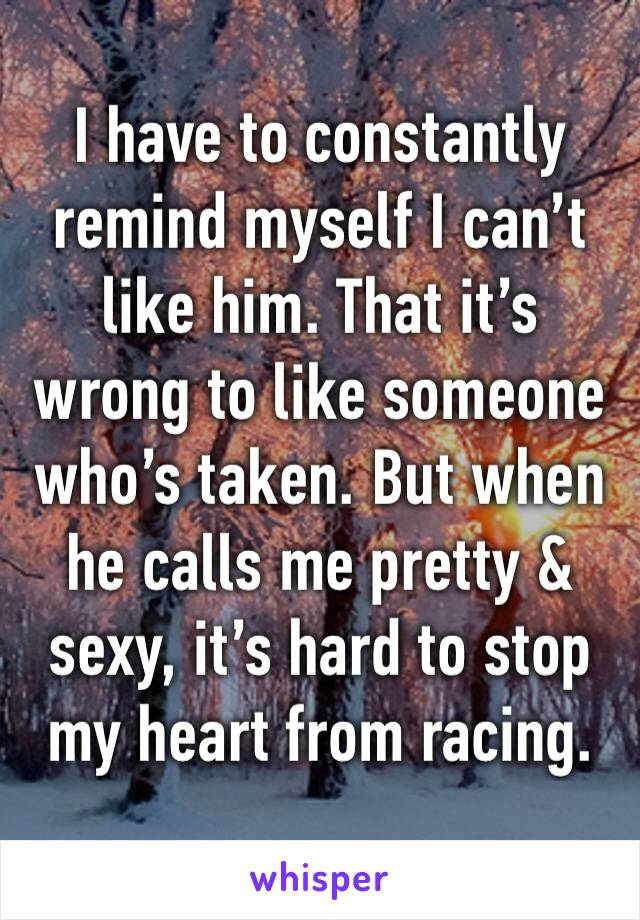 I have to constantly remind myself I can't like him. That it's wrong to like someone who's taken. But when he calls me pretty & sexy, it's hard to stop my heart from racing.