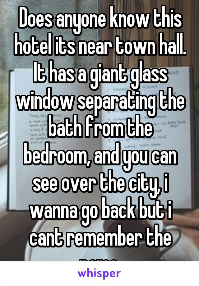 Does anyone know this hotel its near town hall. It has a giant glass window separating the bath from the bedroom, and you can see over the city, i wanna go back but i cant remember the name.