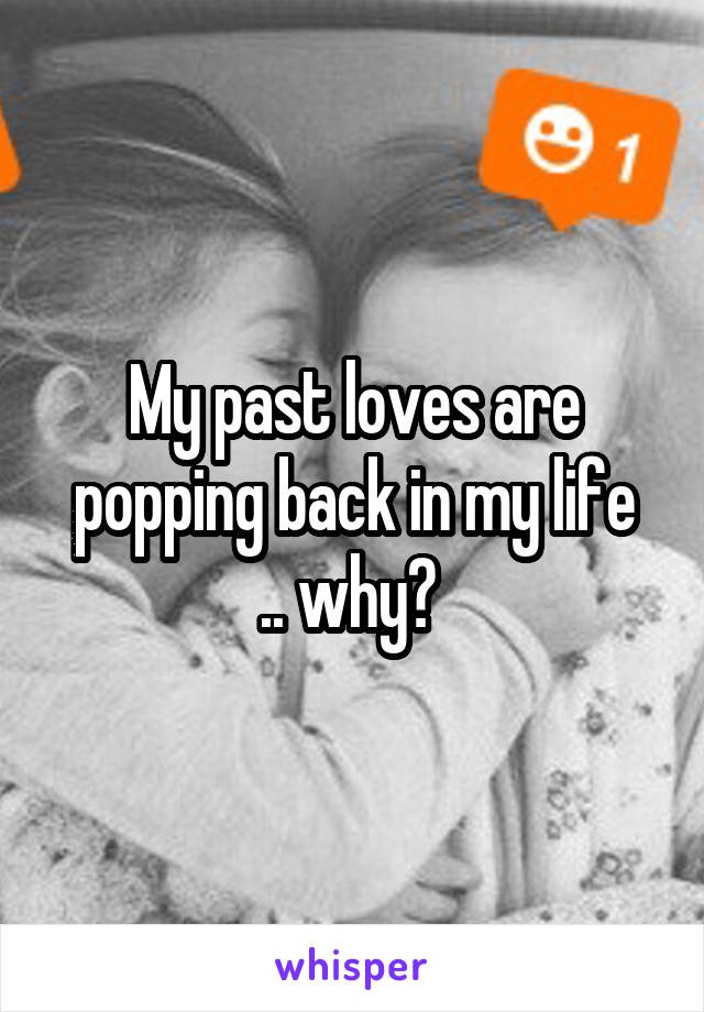 My past loves are popping back in my life .. why?