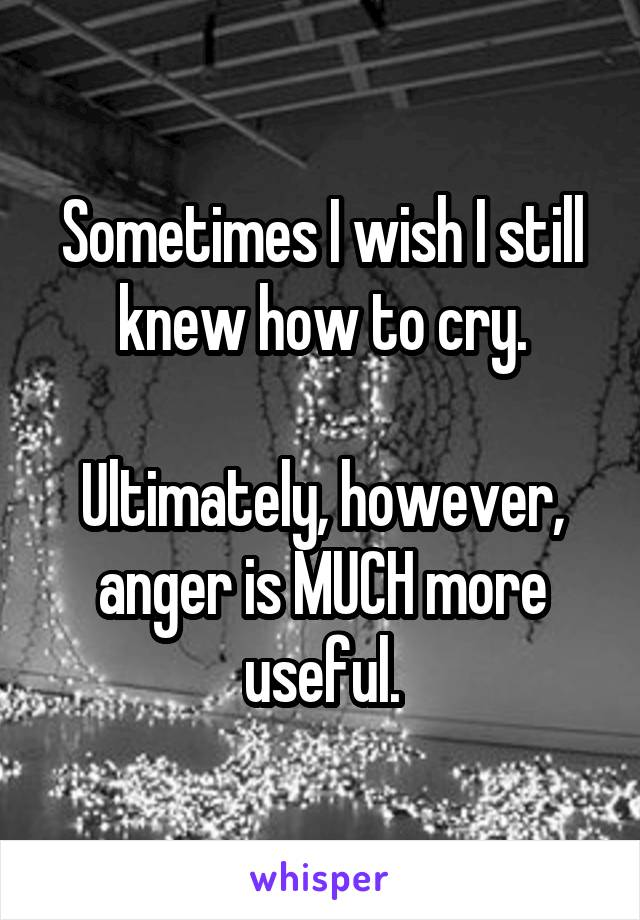 Sometimes I wish I still knew how to cry.  Ultimately, however, anger is MUCH more useful.