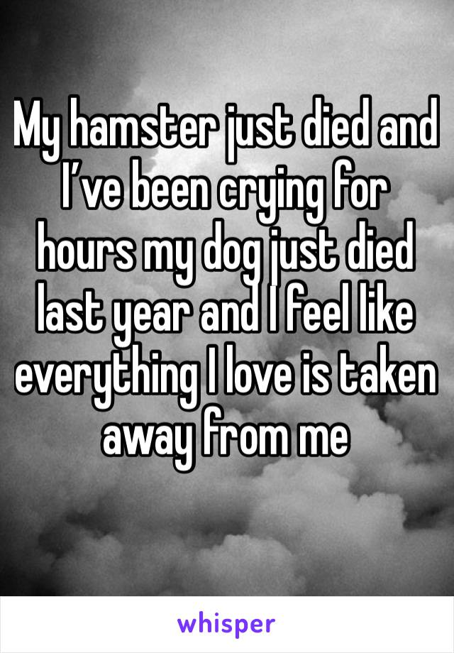 My hamster just died and I've been crying for hours my dog just died last year and I feel like everything I love is taken away from me