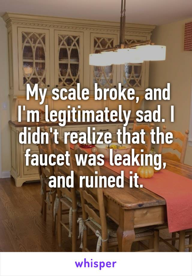 My scale broke, and I'm legitimately sad. I didn't realize that the faucet was leaking, and ruined it.