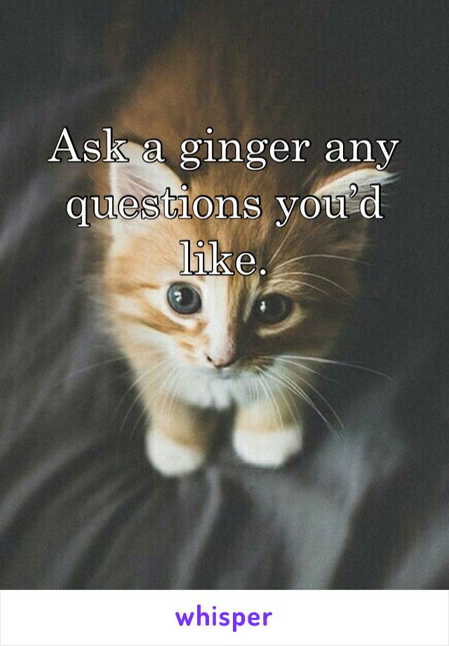 Ask a ginger any questions you'd like.