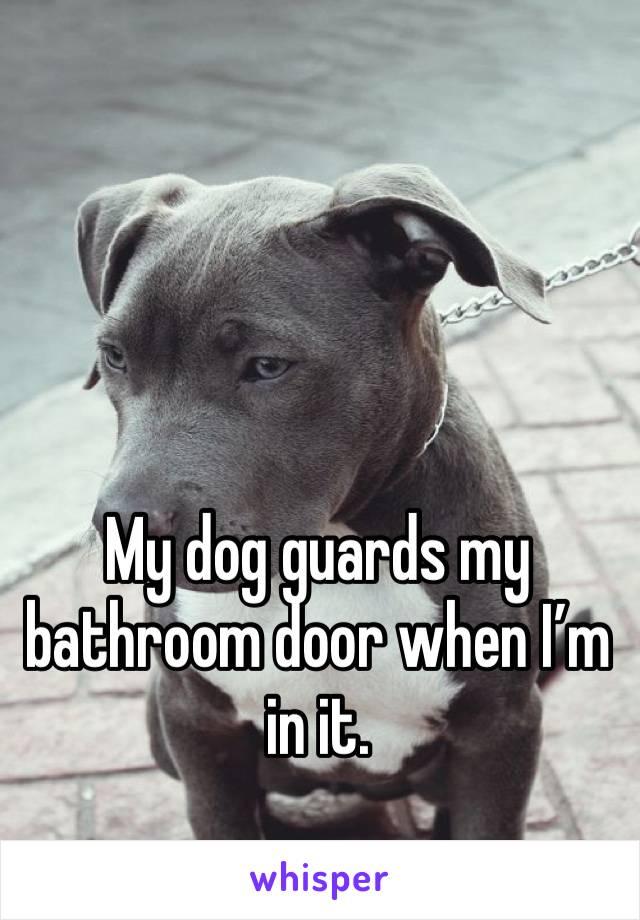 My dog guards my bathroom door when I'm in it.