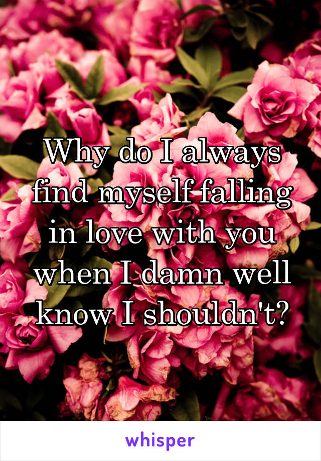 Why do I always find myself falling in love with you when I damn well know I shouldn't?